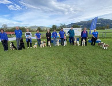 Finale des Rally Obedience Westcups 2020